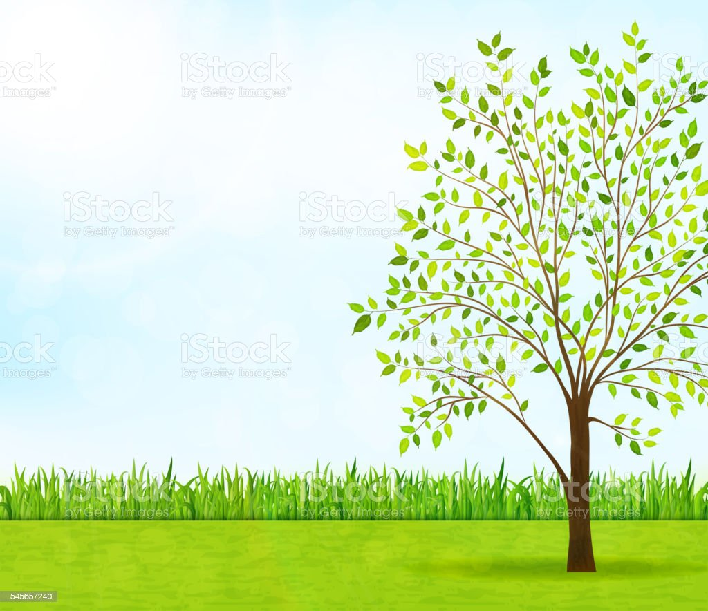Nature Background With Green Grass And Tree Stock Vector Art More