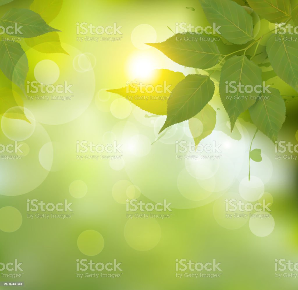 Nature background with green spring leaves. Vector illustration. vector art illustration