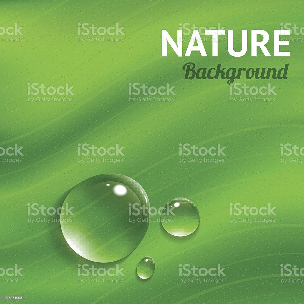 Nature background with transparent water drops vector art illustration