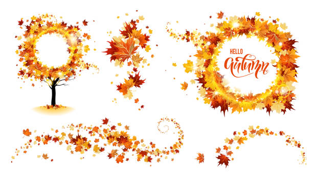 Nature Design decorations Autumn nature design elements. Tree, branch with leaves, fall decor. Maple leaves design. fall leaves stock illustrations