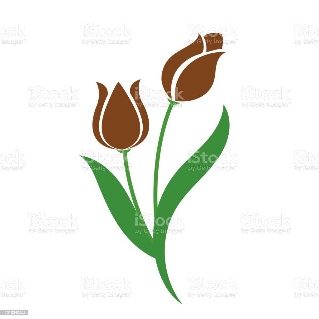 Tulipán marrón de la flor de naturaleza, planta de hoja floral de jardín botánico de vector. - ilustración de arte vectorial