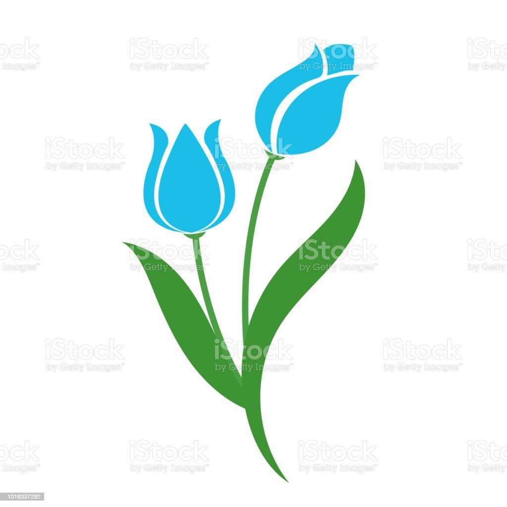 Naturaleza flor luz azul tulipán, planta de hoja floral de jardín botánico de vector. - ilustración de arte vectorial