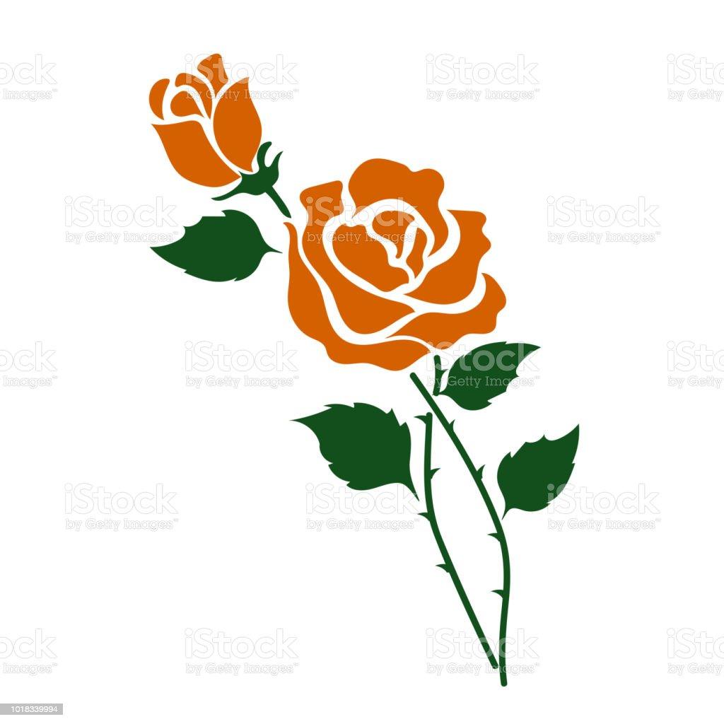 Naturaleza flor naranja rosa, planta de hoja floral de jardín botánico de vector. - ilustración de arte vectorial