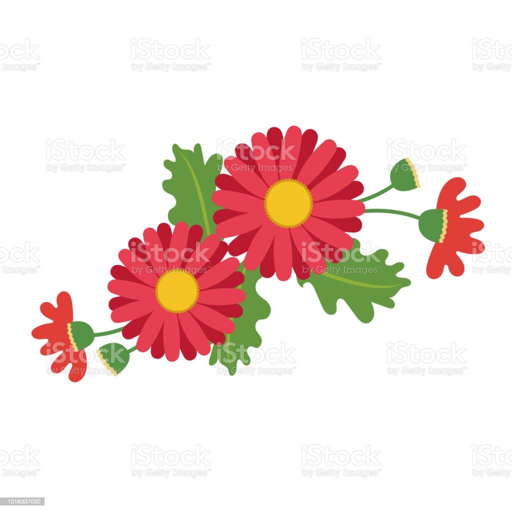 Naturaleza flor roja tipo Margarita, planta de hoja floral de jardín botánico de vector. - ilustración de arte vectorial