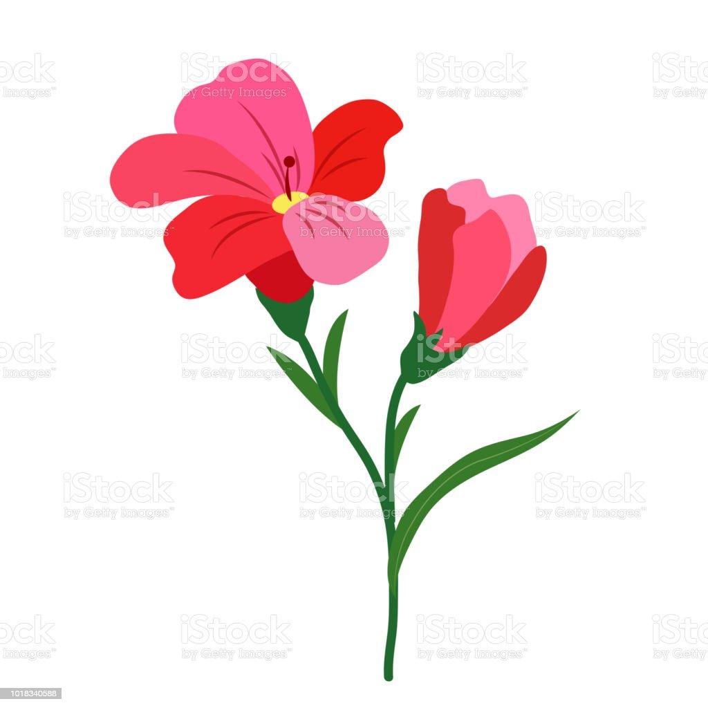 Nature Flower Red Freesia Vector Botanic Garden Floral Leaf Plant