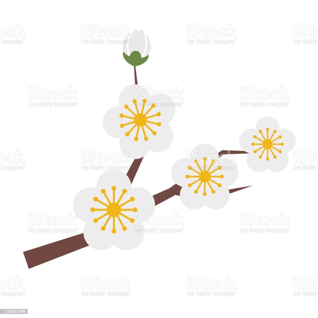 Naturaleza flor blanco ciruela, planta de hoja floral de jardín botánico de vector. - ilustración de arte vectorial