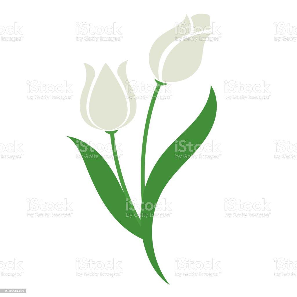 Tulipán blanco de la flor de naturaleza, planta de hoja floral de jardín botánico de vector. - ilustración de arte vectorial