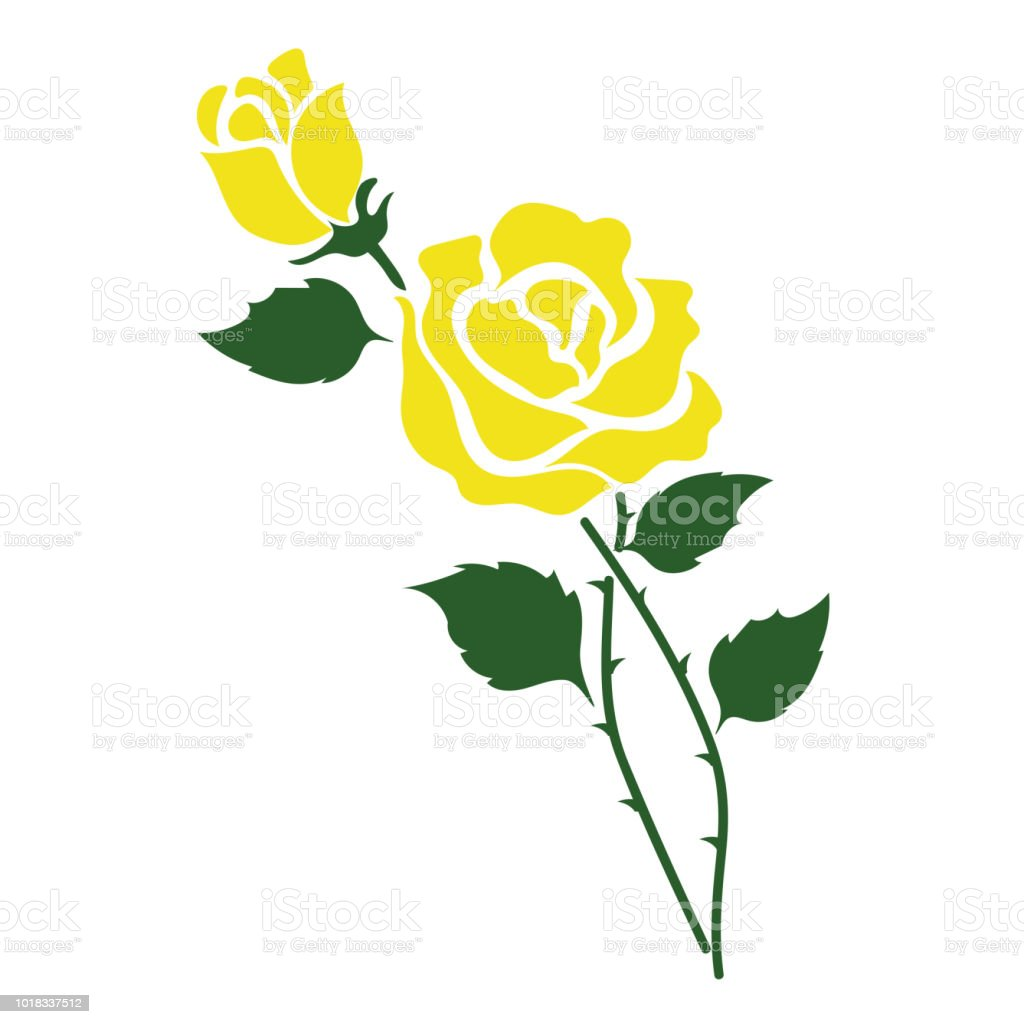 Naturaleza flor amarillo rose, planta de hoja floral de jardín botánico de vector. - ilustración de arte vectorial