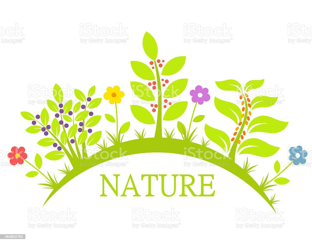 https://media.istockphoto.com/vectors/nature-flowers-and-plants-vector-id484603765