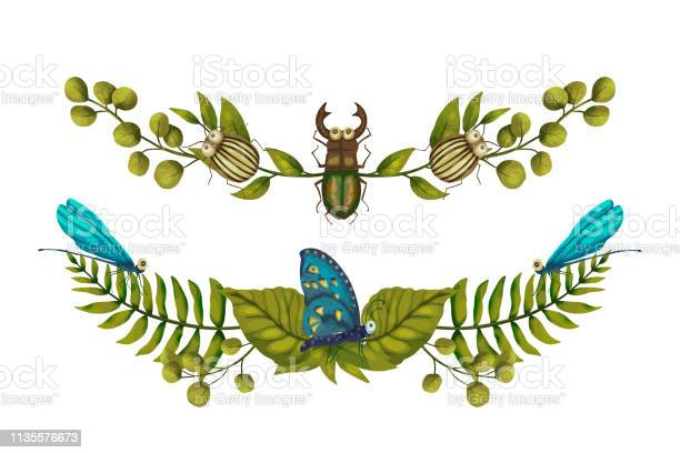 Nature graphics dividers with bugs vector id1135576673?b=1&k=6&m=1135576673&s=612x612&h=mgk7y2hgqp4rsmjapat3j4aww4sq5ok16w2no2nsj1m=