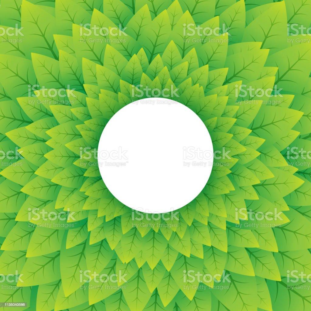Imagenes de fondo naturaleza verde