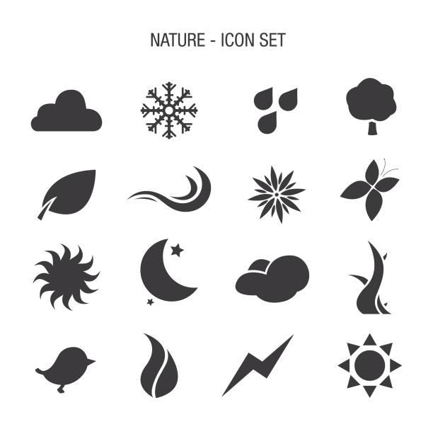 stockillustraties, clipart, cartoons en iconen met natuur icon set - bloemen storm