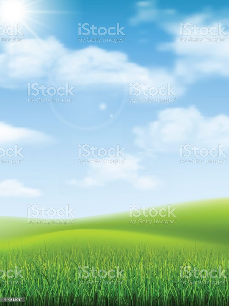 nature landscape grass hill vector art illustration