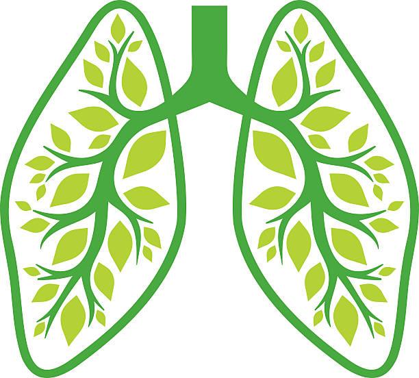 natur lungen - sauerstoff stock-grafiken, -clipart, -cartoons und -symbole