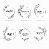 istock Nature, Organic, Bio, Nature doodle floral  leave emblems,  frames and logo 1182247923