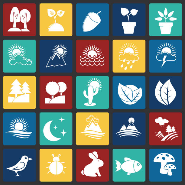 nature related icons set on squares background for graphic and web design. simple vector sign. internet concept symbol for website button or mobile app. - fossilized leaves stock illustrations