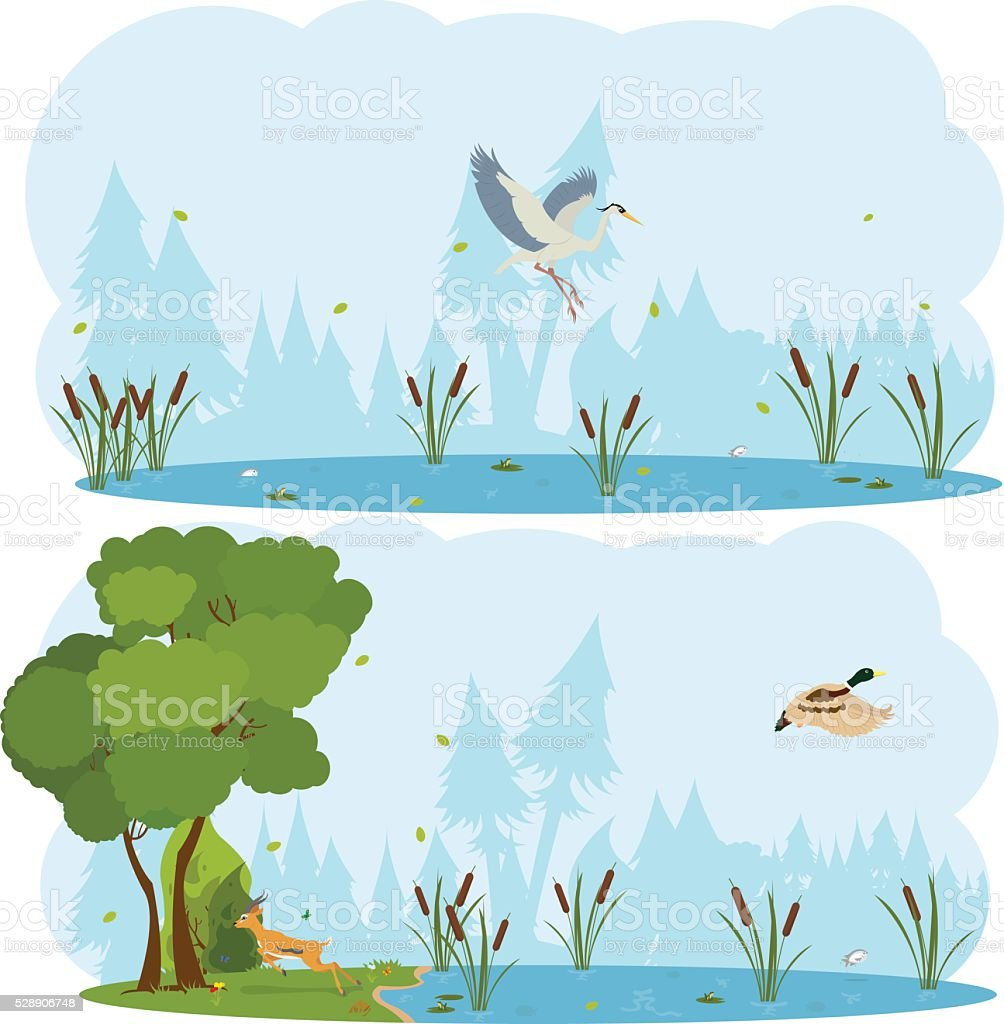 nature scenes. Scene lakes and swamps with living birds vector art illustration