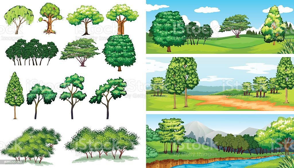 Nature scenes with trees and fields vector art illustration
