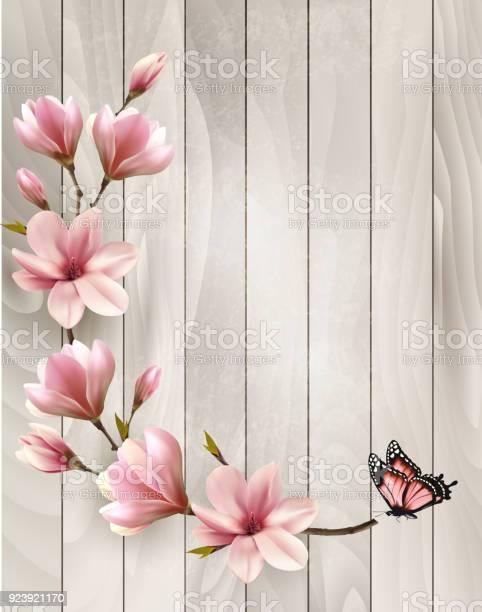 Nature spring background with beautiful magnolia branches vector vector id923921170?b=1&k=6&m=923921170&s=612x612&h=1tep07k5nhwaghveaoptgihloukz6mumpoj2nvfeblw=