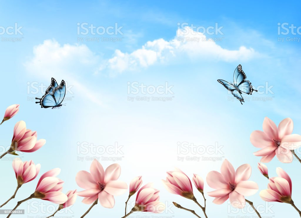 Nature Spring Background With Beautiful Magnolia Vector Royalty Free