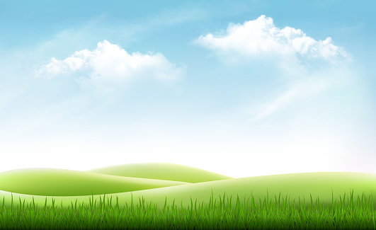 Nature summer background with green grass and blue sky. Vector clipart