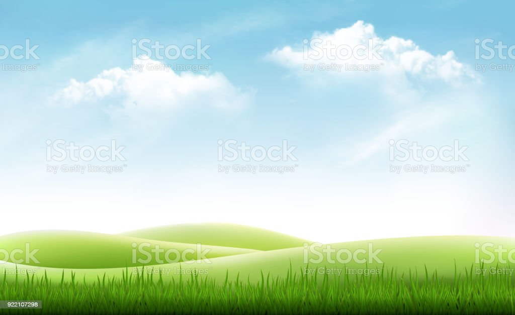 Nature summer background with green grass and blue sky. Vector vector art illustration