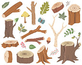 A vector illustration of Nature Wooden Collections Set. Perfect for Woodland Animal theme, holiday, card and many more.