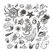 Nautical set. Sea set. Marine collection. Sea elements, underwater world. Fishes, shells, pirate elements, ship elements, anchor, helm, whale, wave.
