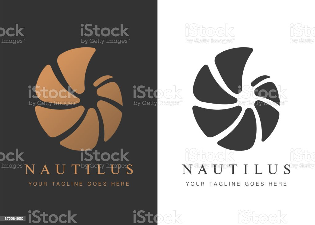 nautilus- copy vector art illustration
