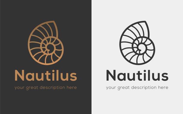 nautilus copy - animal shell stock illustrations, clip art, cartoons, & icons