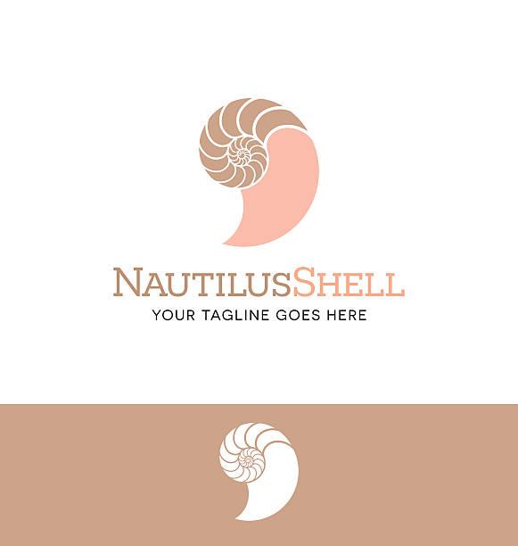 nautilus shell icon for creative use nautilus shell icon for creative use nautilus shell stock illustrations
