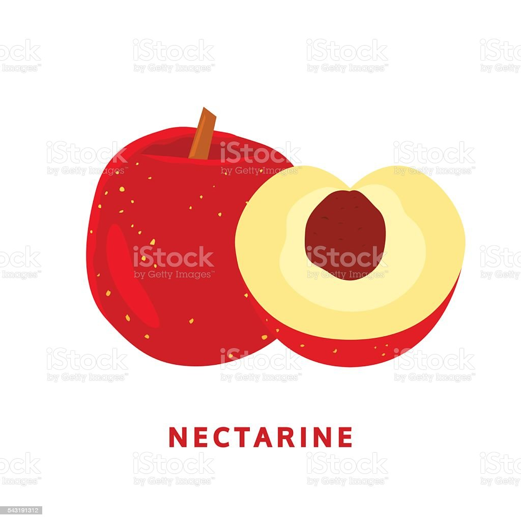 nectarine fruit. isolated food vector logo on white vector art illustration
