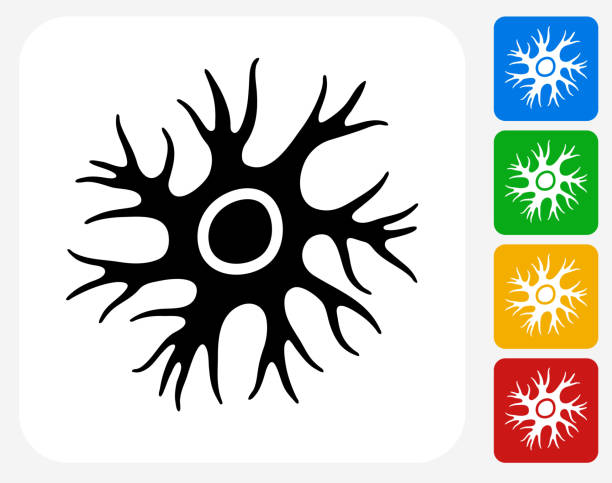Nerve Cell Icon Flat Graphic Design Nerve Cell Icon. This 100% royalty free vector illustration features the main icon pictured in black inside a white square. The alternative color options in blue, green, yellow and red are on the right of the icon and are arranged in a vertical column. human nervous system stock illustrations