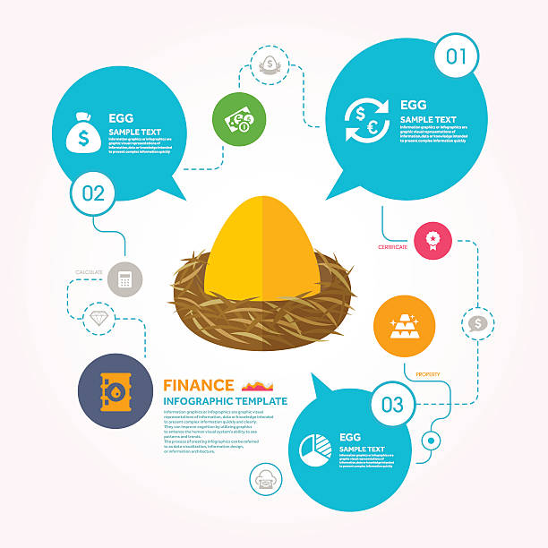 Nest egg and Finance infographic template Nest egg and Finance infographic template  , Vector illustration,eps10  This chart includes the financial information related to the flat icons and templates nest egg stock illustrations