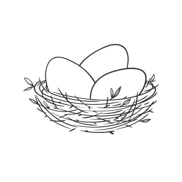 bildbanksillustrationer, clip art samt tecknat material och ikoner med boet med ägg isolerad på vit - bo