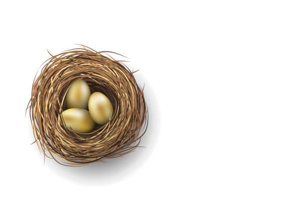 Nest with golden eggs on white background, illustration Nest with three golden eggs on white background, vector illustration, eps 10 with transparency and gradien meshes nest egg stock illustrations