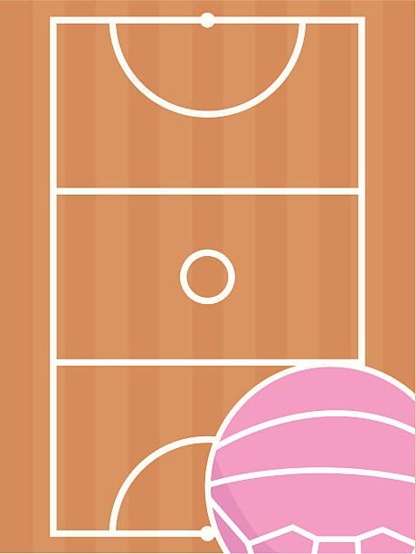 stockillustraties, clipart, cartoons en iconen met netball court and ball - netball