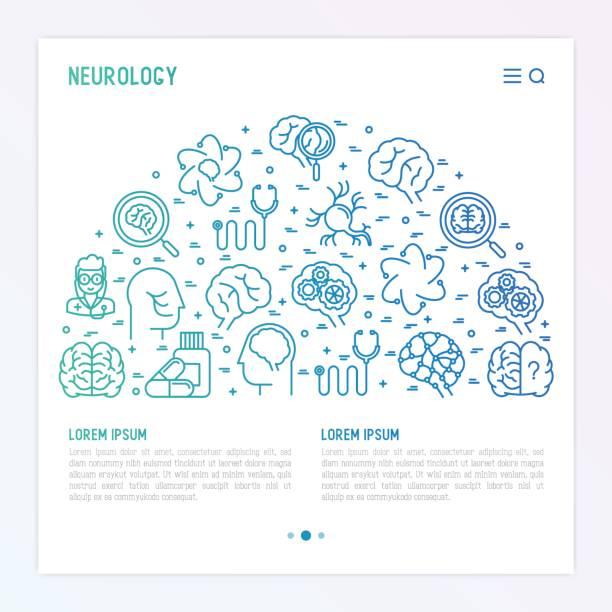 ilustraciones, imágenes clip art, dibujos animados e iconos de stock de concepto de neurología en medio círculo con los iconos de la delgada línea: cerebro, neuronas, conexiones neuronales, neurólogo, lupa. ilustración de vector de fondo de estudio médico o informe con lugar para el texto. - profesional de salud mental