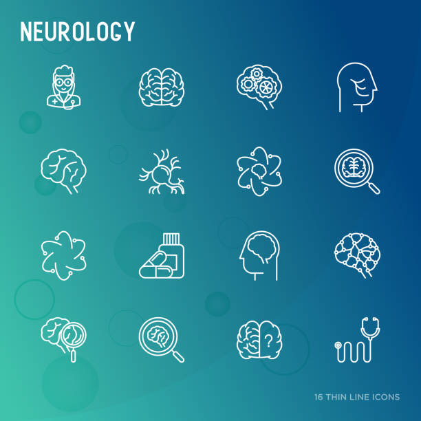 Neurology concept thin line icons: brain, neuron, neural connections, neurologist, magnifier. Vector illustration for medical survey or report. Neurology concept thin line icons set: brain, neuron, neural connections, neurologist, magnifier. Vector illustration for medical survey or report. neurodegenerative disease stock illustrations