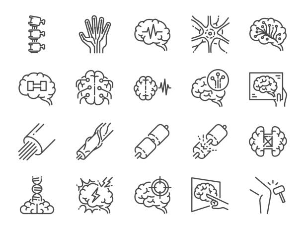 ilustraciones, imágenes clip art, dibujos animados e iconos de stock de conjunto de iconos de línea de neurología. incluye iconos como neurológico, neurólogo, cerebro, sistema nervioso, nervios y más. - brain