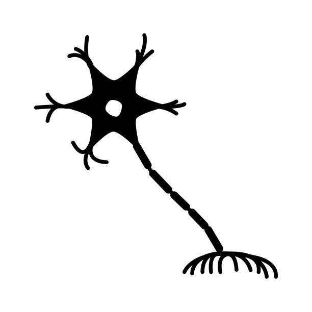 neuron icon, vector illustration Vector illustration nerve fiber stock illustrations