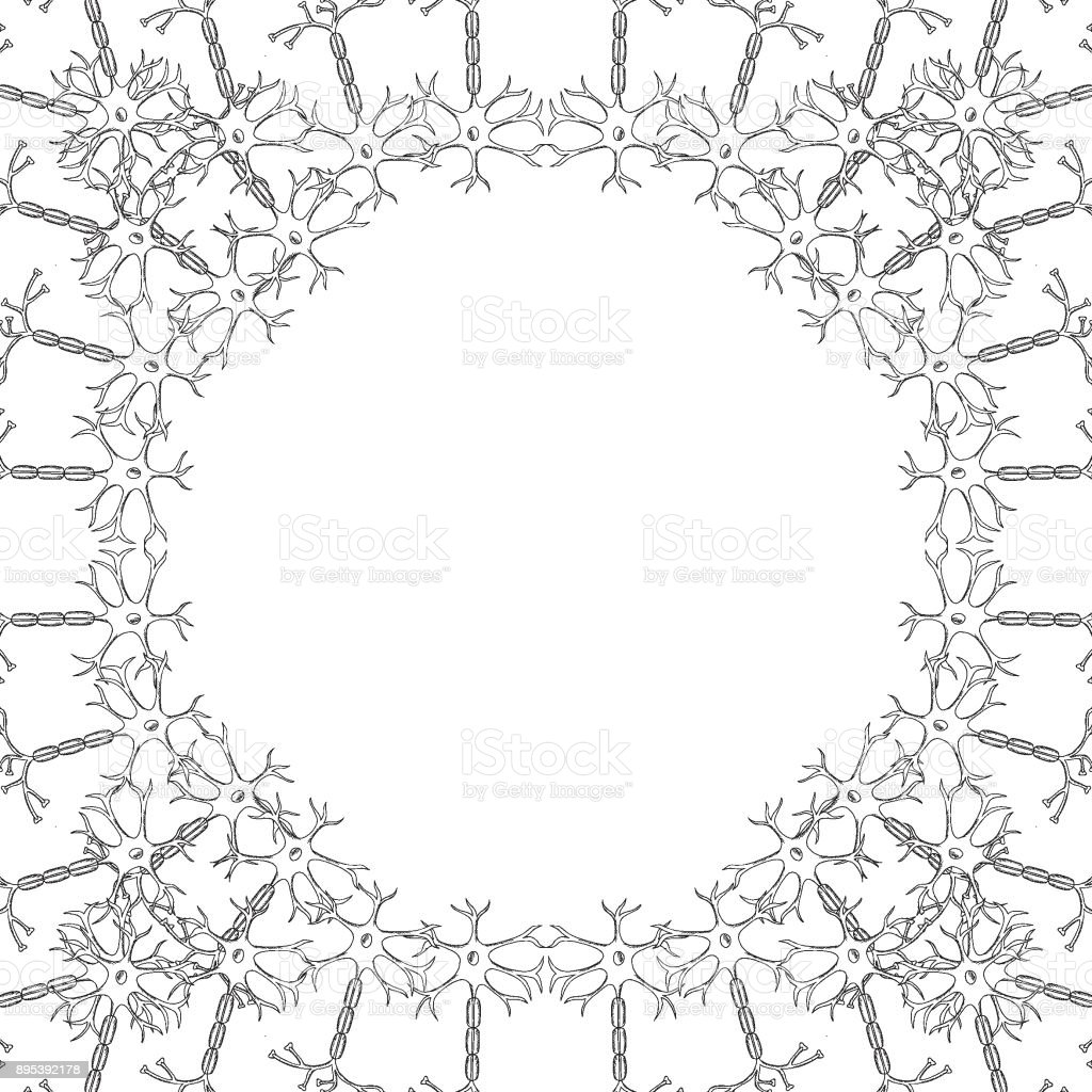 Neuron Skizze Bild 1 Stock Vektor Art und mehr Bilder von Anatomie ...