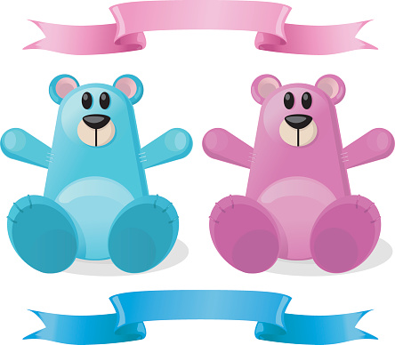 New Baby Boy and Girl Soft Toy Bears