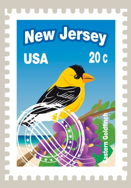 New Jersey State Postage Vector New Jersey State Postage american goldfinch stock illustrations