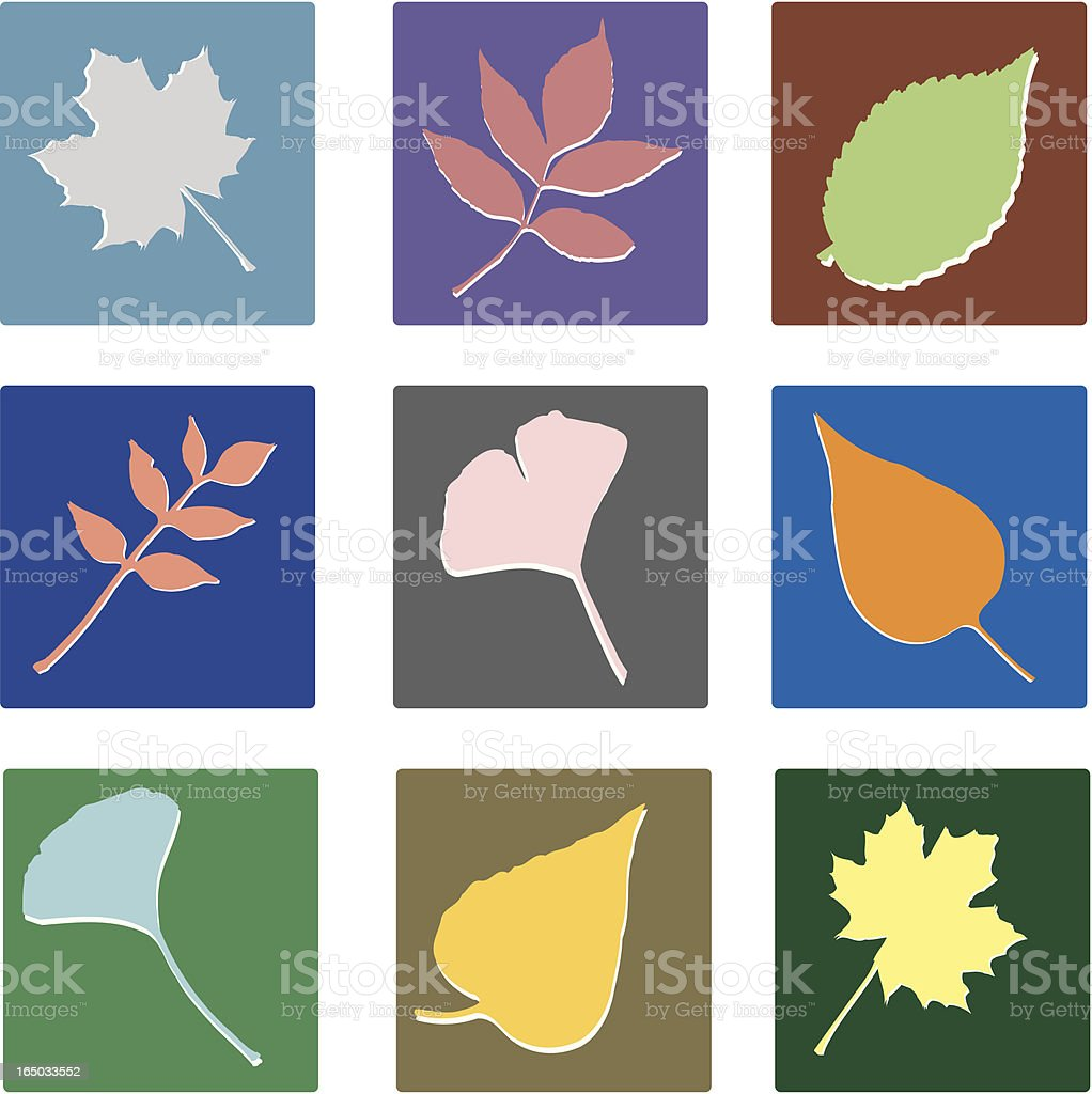 New Leaf Squares (vector illustrations) royalty-free stock vector art