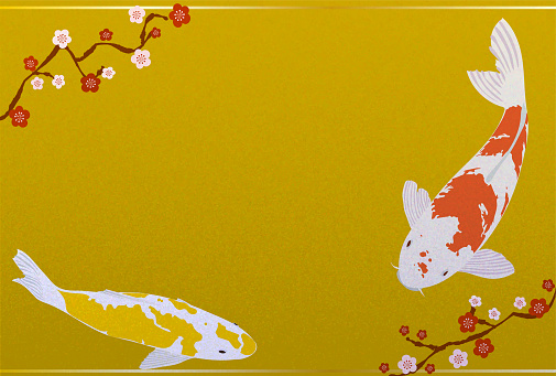 New year card illustration of red and yellow Nishikigoi