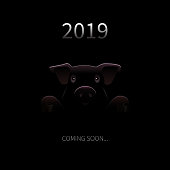 2019 New Year Coming Soon Background. Vector Greeting Card with Pig Silhouette and text in Darkness. Funny Festive Background for New Year. Vector Creative Illustration.