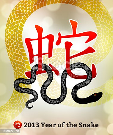 istock New Year of the Snake 2013 with 3D Chinese Lettering 165927278