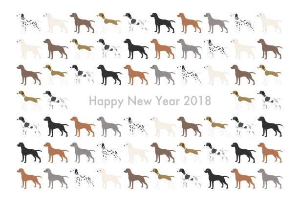 2018 neujahrskarte (jahr des hundes) - vizsla stock-grafiken, -clipart, -cartoons und -symbole
