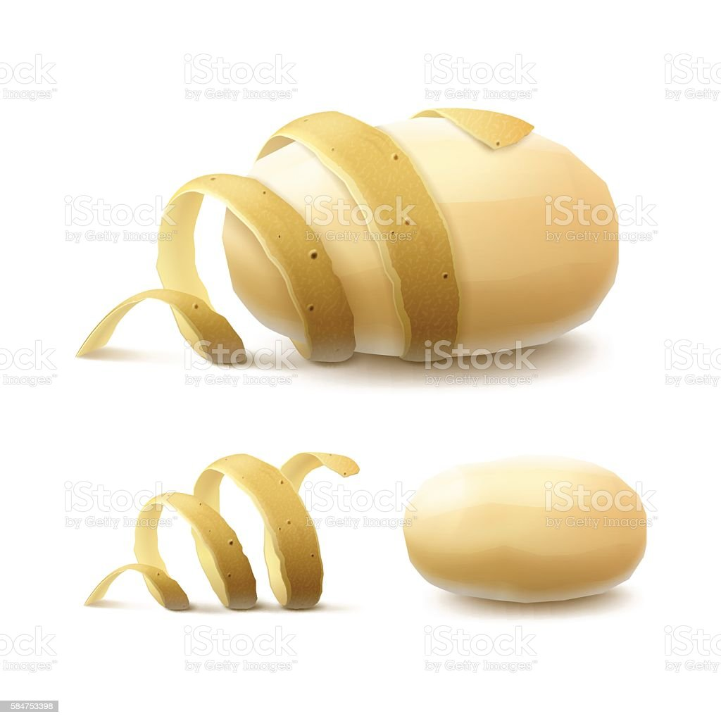 New Yellow Raw Whole Peeled Potato with twisted peel Isolated vector art illustration